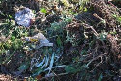 Green waste to be turned in to compost