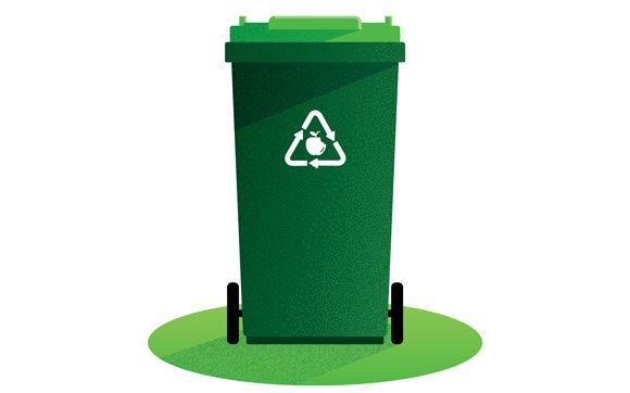 Organics - Green Bin